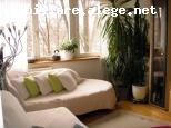 vanzare apartament 3 camere Balta Alba